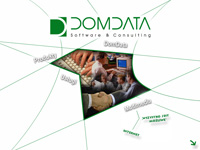 <span>DomData </span>- Software & Consulting